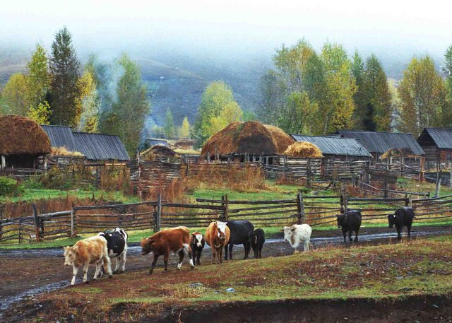 Hemu Village View - Xinjiang Photography Tour
