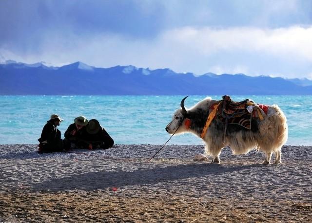 Tibet Namtso Lake Sightseeing