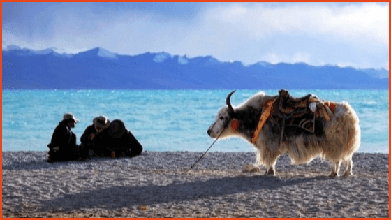 Travel Namtso Lake in Tibet