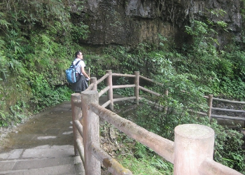 Clients Hiking in Mount Emei
