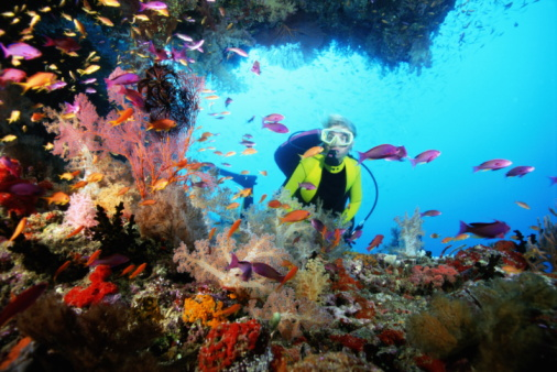 Hainan island is china's largest coral nature reserve with colorful