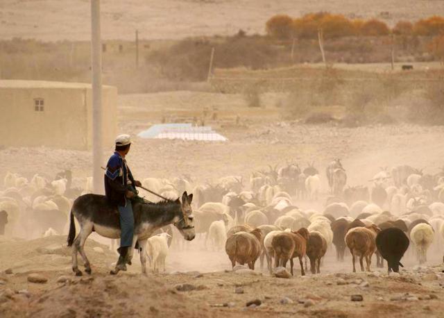 Visit Kashgar Old Town - Xinjiang Highlights Tour