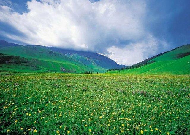 Visit Narat Grassland in Xinjiang Silk Road Tour