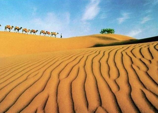 Ningxia Sand Dust