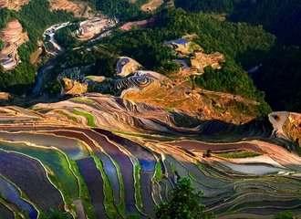 Jiabang Rice Terrace Bird View