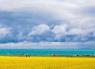 Qinghai lake view in summer