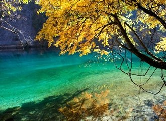 Photo of Jiuzhaigou National Park beautiful autumn leaves