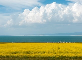 Travel the Silk Road to Qinghai Lake in Tibet