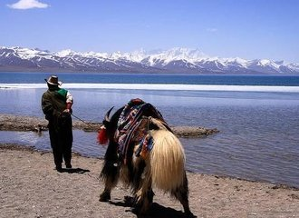 Tibet Namtso Lake Sightseeing