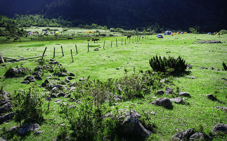 Campsite at Dacaopo