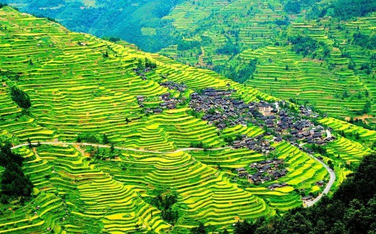 Kaitun rice terrace