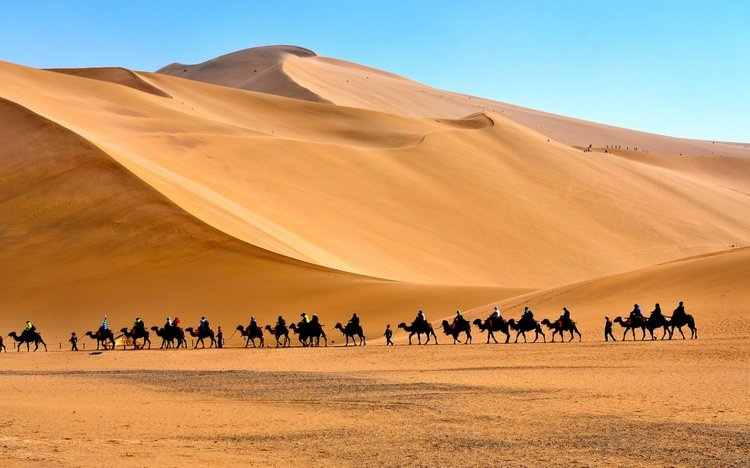 Camel Riding in Dunhuang Along the Silk Road
