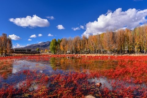 Autumn landscapes around Daocheng