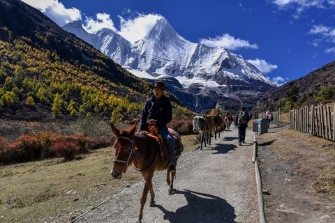 riding horse to Milk lake at Yading Nature Reserve