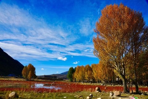 Daocheng Red glass field