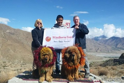 Tom and Janet besides Tibetan mastiff with guide 2017