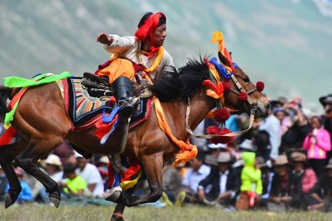 Tour the Tibetan Yushu Horse Racing Festival