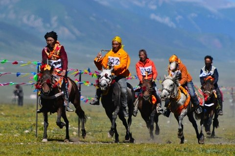Visit the Yushu Horse Racing Festival