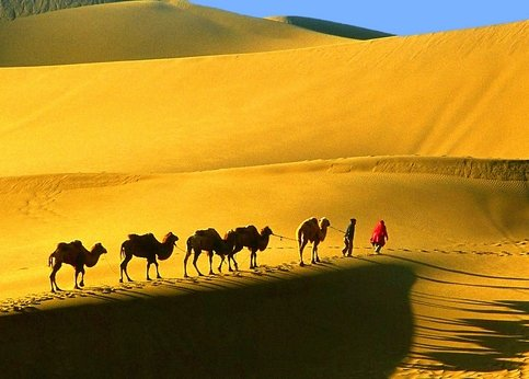 China Silk Road Trip Camel Riding