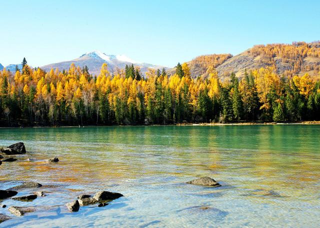 Xinjiang Kanas Lake Sightseeing