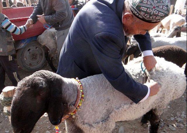 Xinjiang Kashagar Sunday Market