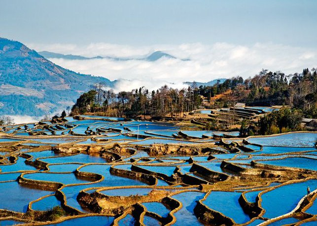 Yuanyang Rice Terraces Tour