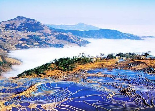 Yunnan Yuanyang Rice Terraces Tour