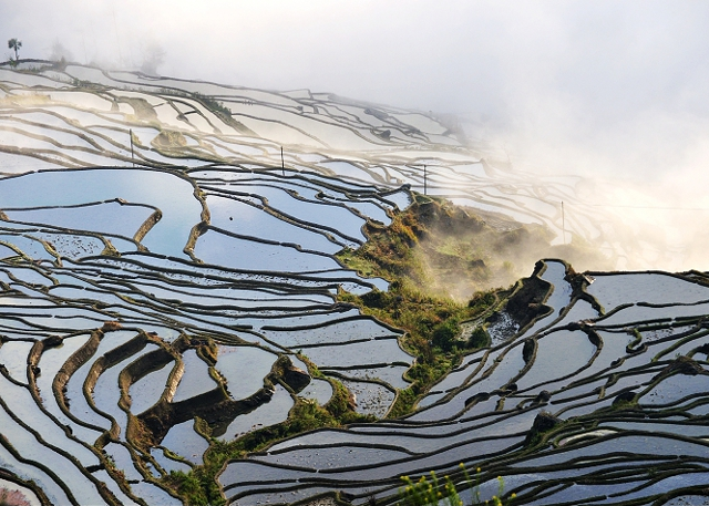 Yunnan Yuanyang Rice Terraces - Yunnan Photo Tour