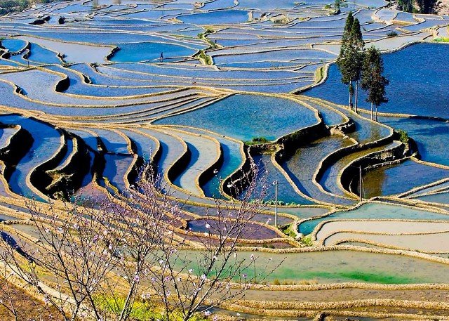 Yunnan Photo Tour to Yuanyang
